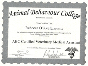 ABC Certified Veterinary Medical Assistant January 2013