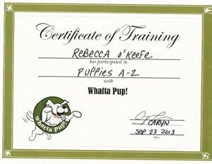 Certificate of Training Puppies A - Z