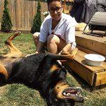 Madison - Dog Walker Barks N Purrs Toronto