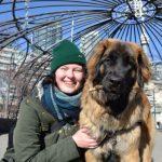 Lindsay - Full time dog walker and cat sitter