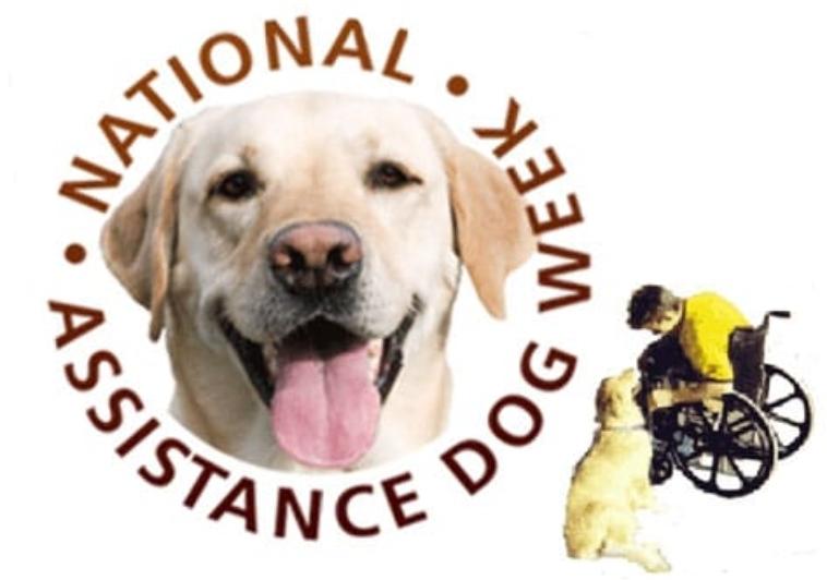 International Assistance Dog Week: August 5-11